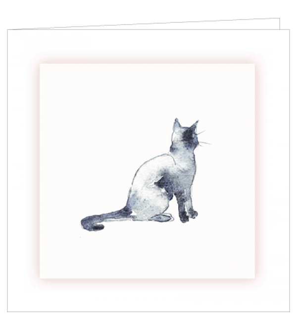 ***REDUCED PRICE*** Sympathy Cards (Mixed Feline)