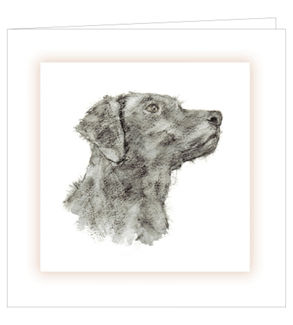 ***REDUCED PRICE*** Sympathy Cards (Mixed Canine)