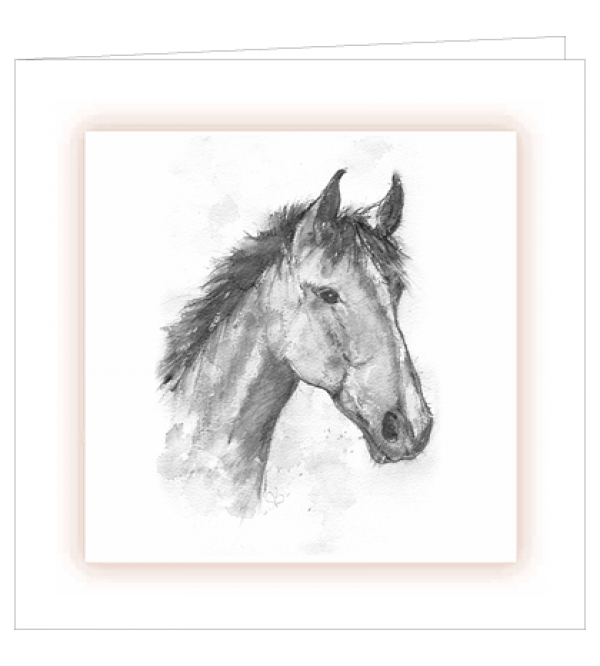 ***REDUCED PRICE*** Sympathy Cards (Mixed Equine)