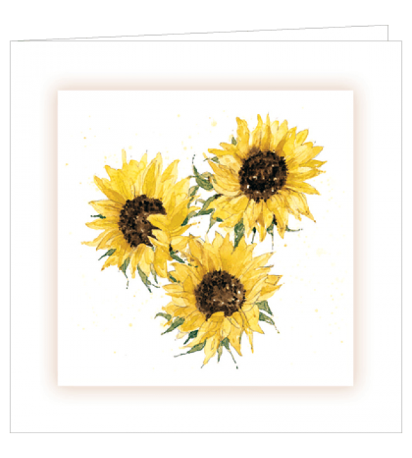 ***REDUCED PRICE*** Sympathy Cards (Mixed General)